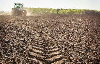 Low Compaction